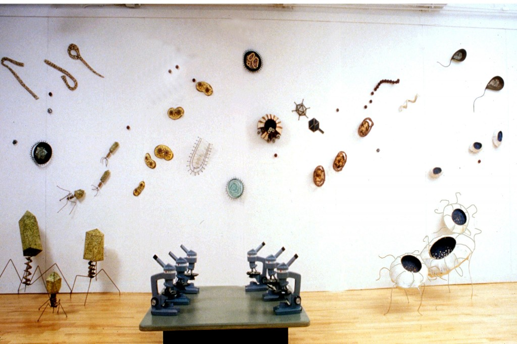Viruses and Bacteria sculptures installation view